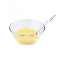Proteine Custard Pudding | Proteine Dessert | Protiplan
