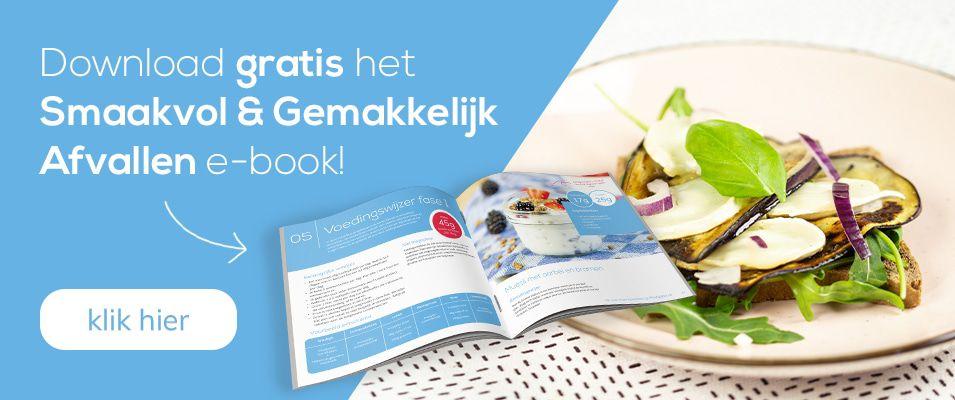Conceptboek e-book