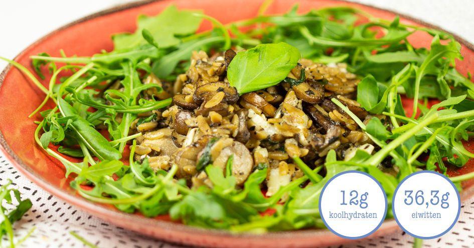 Rijst met paddenstoelen en truffel | Protiplan